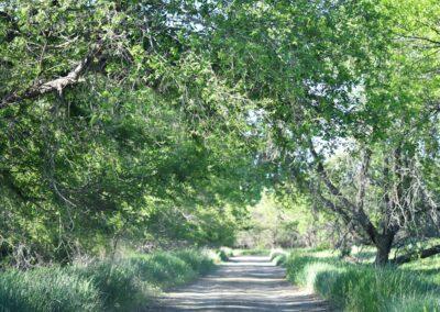 Cow Creek Recreation Area