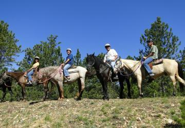 Blacktail Horseback Tours